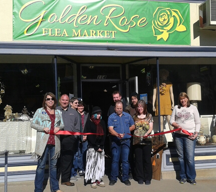 golden rose ribbon cutting cut cropped